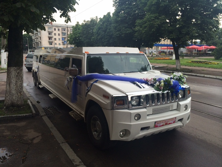 mega-limo (25)