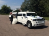 mega-limo (11)