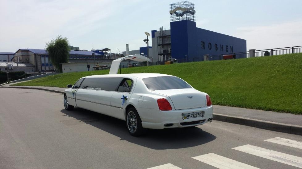 mega-limo (30)