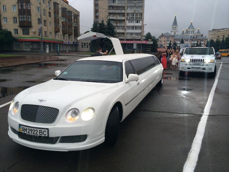 mega-limo (36)