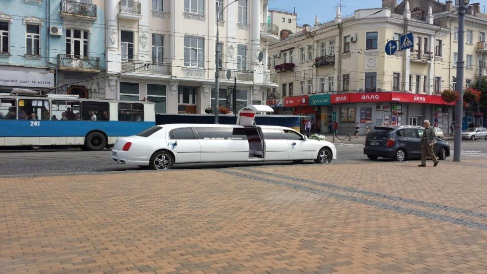mega-limo (8)